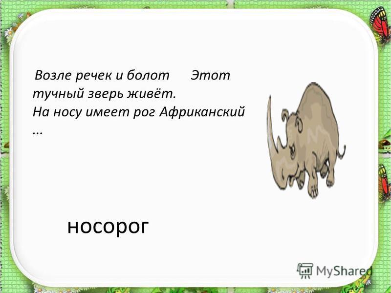 носорог Возле речек и болот Этот тучный зверь живёт. На носу имеет рог Африканский...
