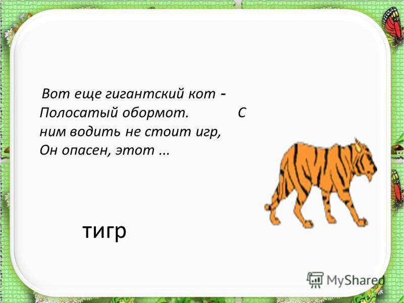 тигр Вот еще гигантский кот - Полосатый обормот. С ним водить не стоит игр, Он опасен, этот...