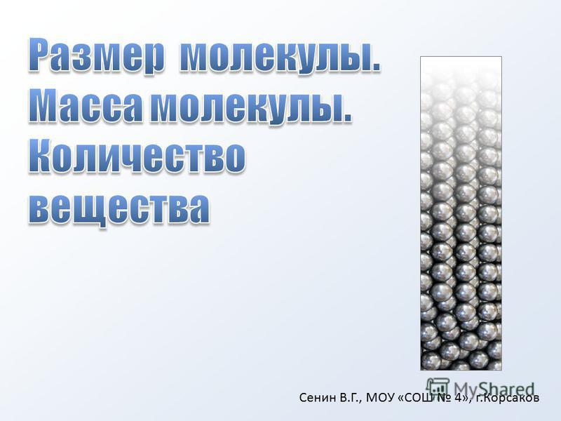 Сенин В.Г., МОУ «СОШ 4», г.Корсаков
