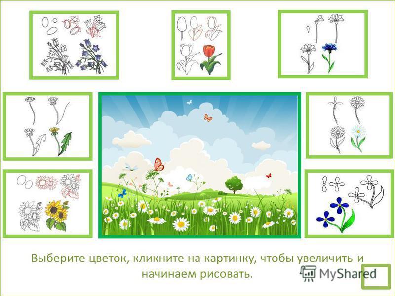 Выберите цветок, кликните на картинку, чтобы увеличить и начинаем рисовать.