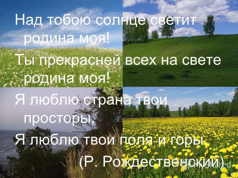 Над тобою солнце светит родина моя! Ты прекрасней всех на свете родина моя! Я люблю страна твои просторы, Я люблю твои поля и горы. (Р. Рождественский)