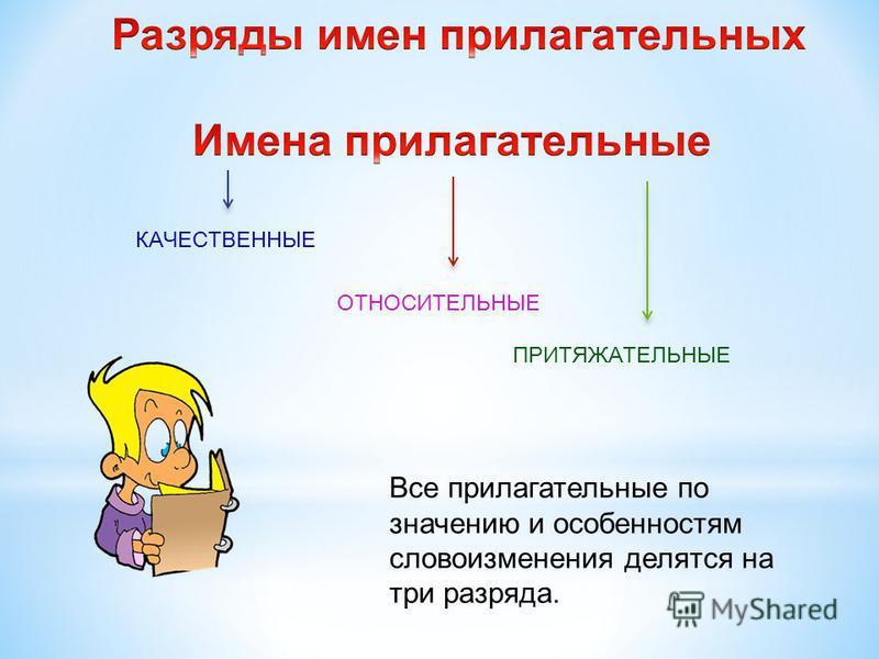 КАЧЕСТВЕННЫЕ ОТНОСИТЕЛЬНЫЕ ПРИТЯЖАТЕЛЬНЫЕ Все прилагательные по значению и особенностям словоизменения делятся на три разряда.