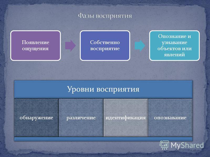 Появление ощущения Собственно восприятие Опознание и узнавание объектов или явлений Уровни восприятия обнаружениеразличениеидентификацияопознавание