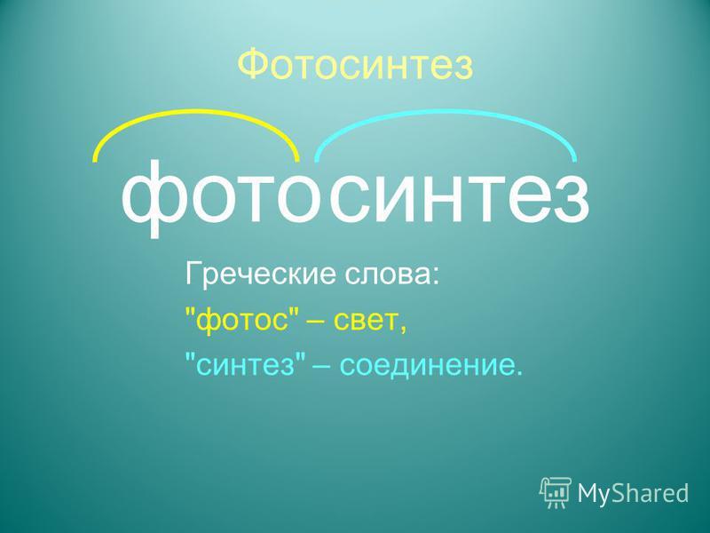 Фотосинтез Греческие слова: фотос – свет, синтез – соединение. фотосинтез