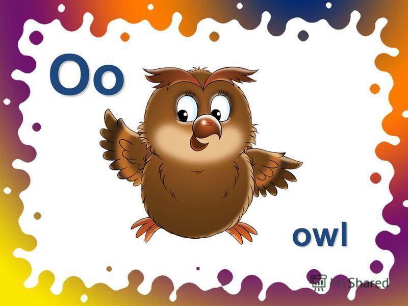 Oo owl owl