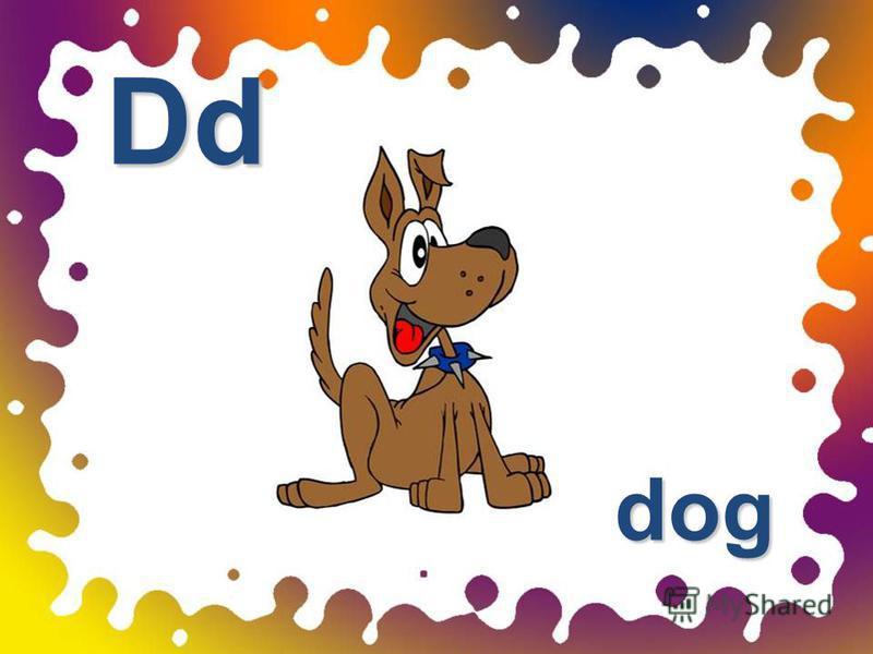 dog Dd