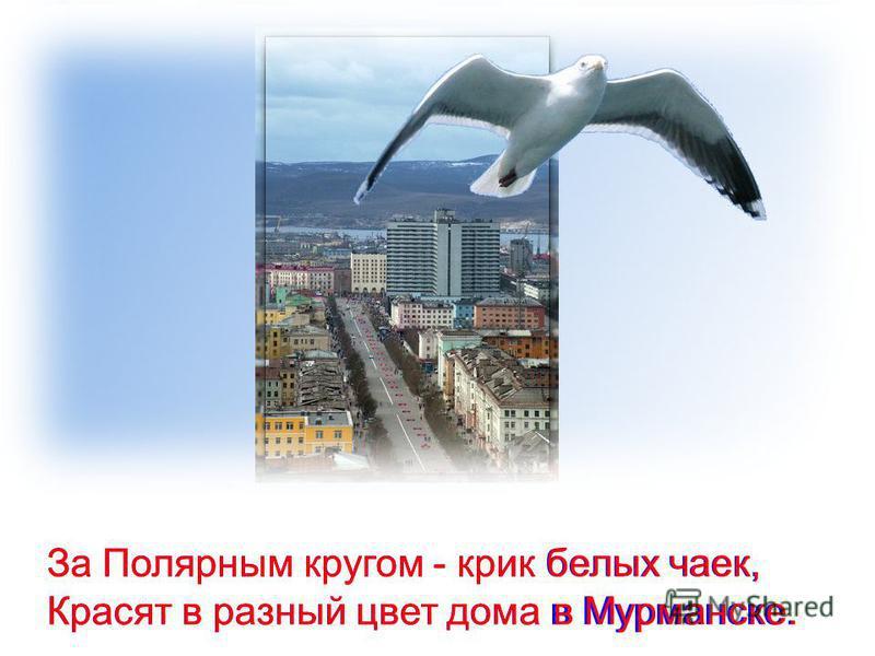 За Полярным кругом - крик белых чаек, Красят в разный цвет дома в Мурманске.Красят в разный цвет дома в Мурманске. За Полярным кругом - крик белых чаек,
