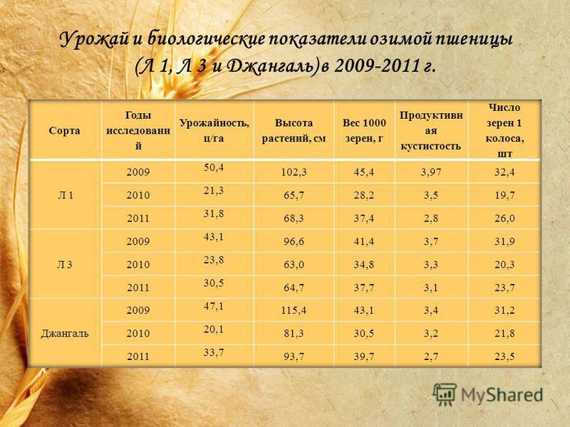 Урожай и биологические показатели озимой пшеницы (Л 1, Л 3 и Джангаль) в 2009-2011 г.