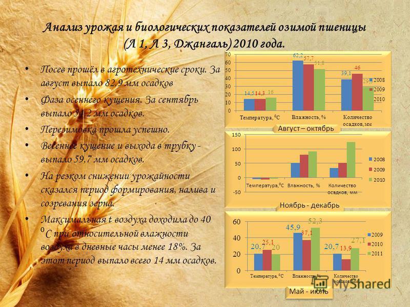 Анализ урожая и биологических показателей озимой пшеницы (Л 1, Л 3, Джангаль) 2010 года. Посев прошёл в агротехнические сроки. За август выпало 82,9 мм осадков Фаза осеннего кущения. За сентябрь выпало 54,2 мм осадков. Перезимовка прошла успешно. Вес