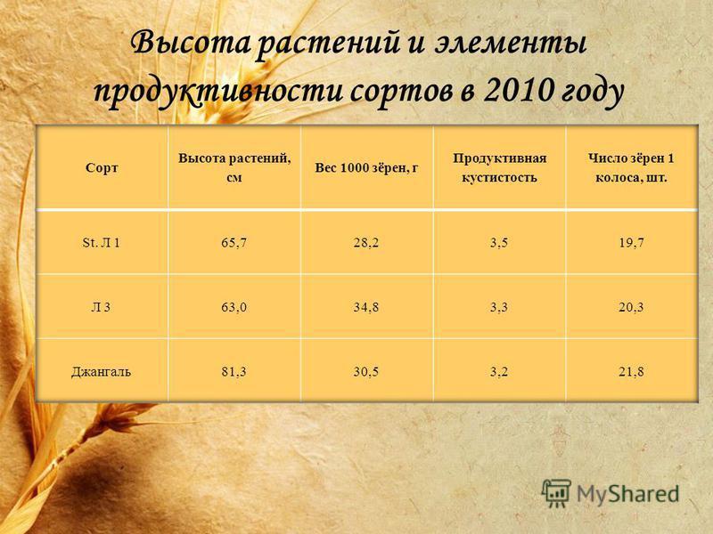 Высота растений и элементы продуктивности сортов в 2010 году