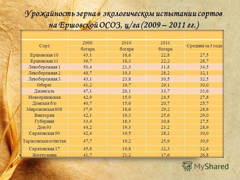 Урожайность зерна в экологическом испытании сортов на Ершовской ОСОЗ, ц/га (2009 – 2011 гг.)