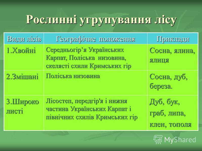 Рослинні угрупування лісу Види лісів Географічне положення Приклади 1.Хвойні Середньогіря Українських Карпат, Поліська низовина, скелясті схили Кримських гір Сосна, ялина, ялиця 2.Змішані Поліська низовина Сосна, дуб, береза. 3.Широко листі Лісостеп,