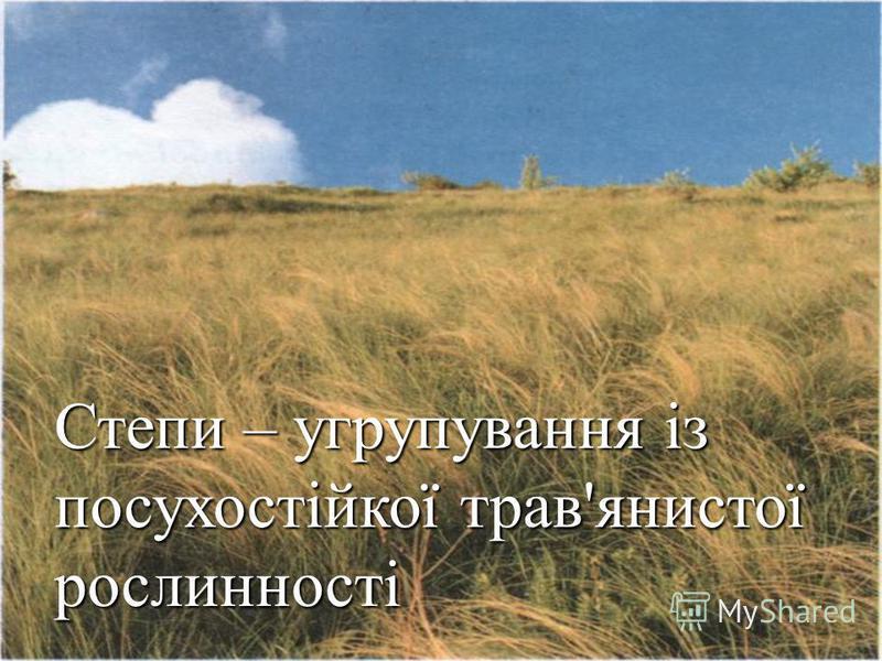 Степи – угрупування із посухостійкої трав'янистої рослинності