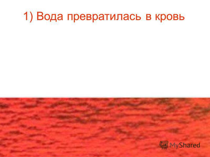 1) Вода превратилась в кровь