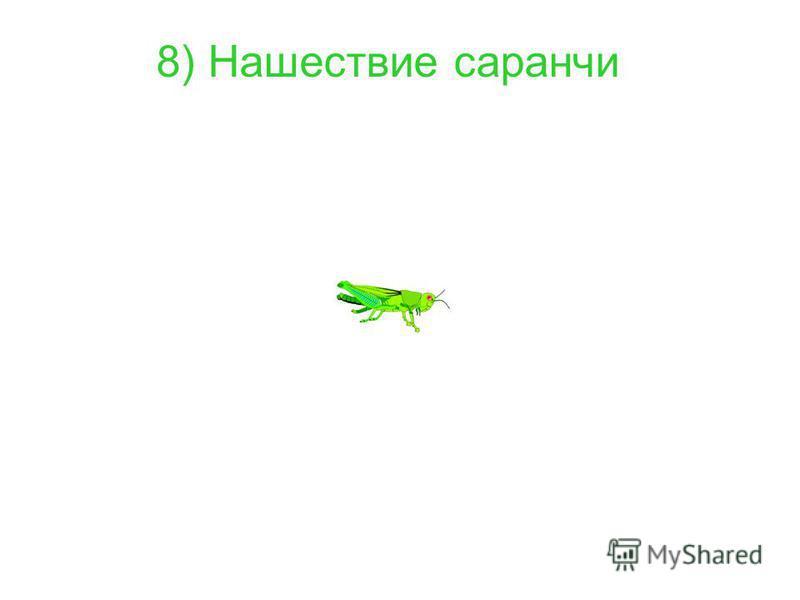 8) Нашествие саранчи