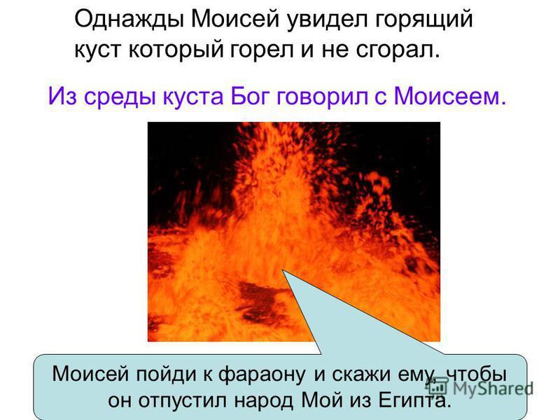 Однажды Моисей увидел горящий куст который горел и не сгорал. Моисей пойди к фараону и скажи ему, чтобы он отпустил народ Мой из Египта. Из среды куста Бог говорил с Моисеем.