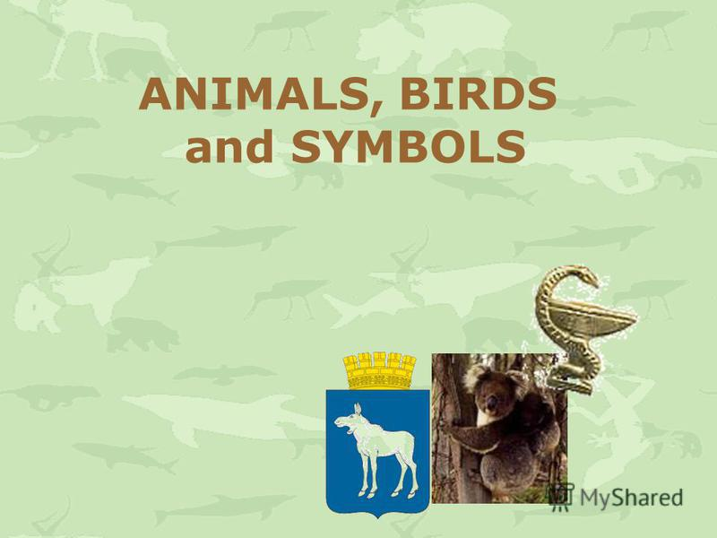 ANIMALS, BIRDS and SYMBOLS