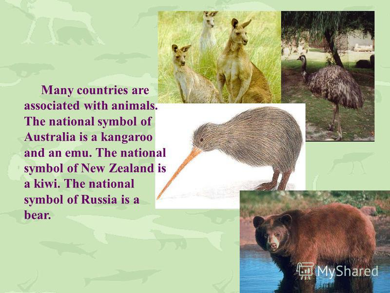Many countries are associated with animals. The national symbol of Australia is a kangaroo and an emu. The national symbol of New Zealand is a kiwi. The national symbol of Russia is a bear.