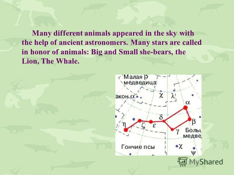 Many different animals appeared in the sky with the help of ancient astronomers. Many stars are called in honor of animals: Big and Small she-bears, the Lion, The Whale.