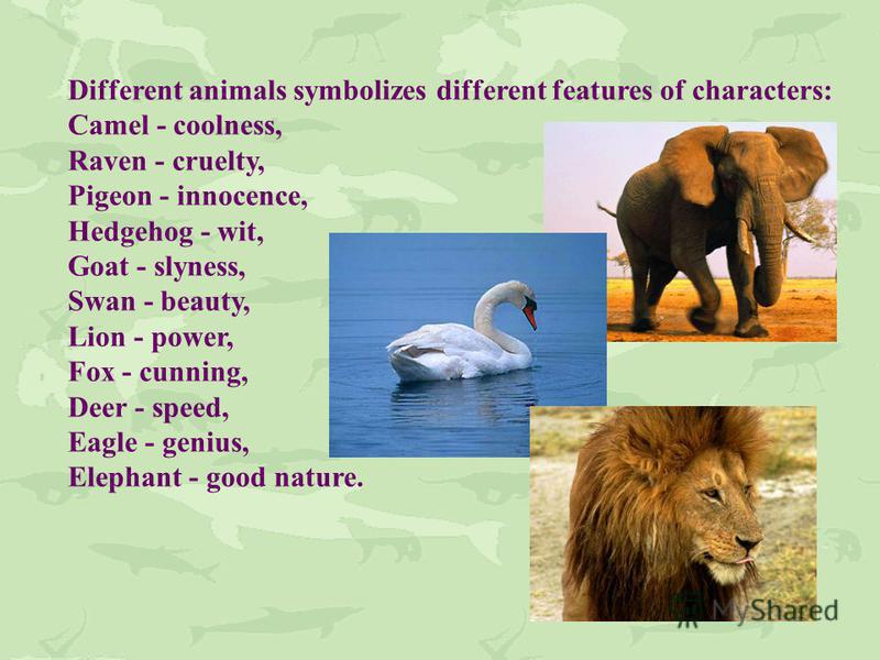 Different animals symbolizes different features of characters: Camel - coolness, Raven - cruelty, Pigeon - innocence, Hedgehog - wit, Goat - slyness, Swan - beauty, Lion - power, Fox - cunning, Deer - speed, Eagle - genius, Elephant - good nature.