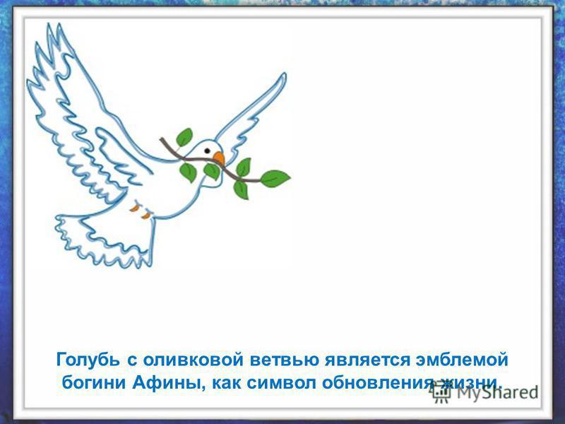 Голубь с оливковой ветвью является эмблемой богини Афины, как символ обновления жизни.