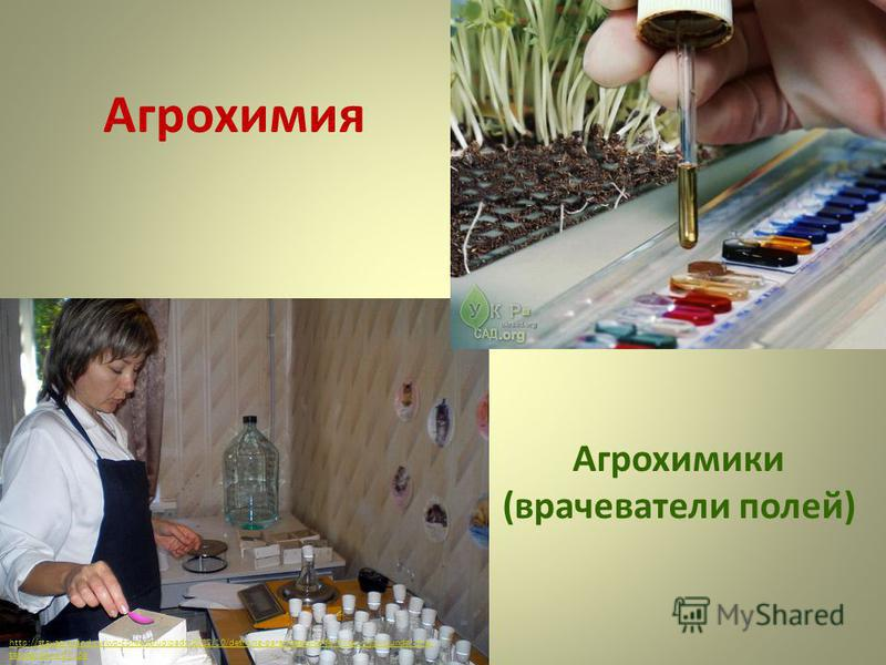 Агрохимия http://stavagroland.ru/wp-content/uploads/2012/10/defining-parameters-of-fertility-in-soils-under-the- tab-gardens-01. jpg Агрохимики (врачеватели полей)