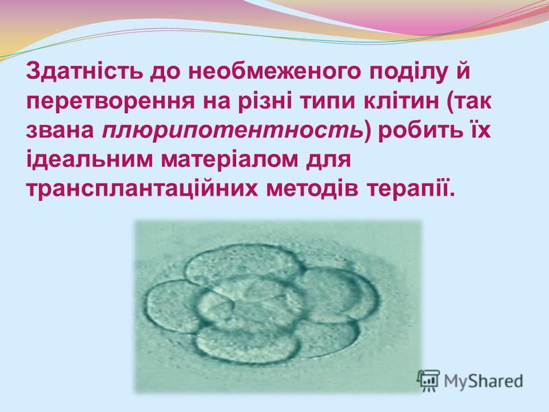 Здатність до необмеженого поділу й перетворення на різні типи клітин (так звана плюрипотентность) робить їх ідеальним матеріалом для трансплантаційних методів терапії.
