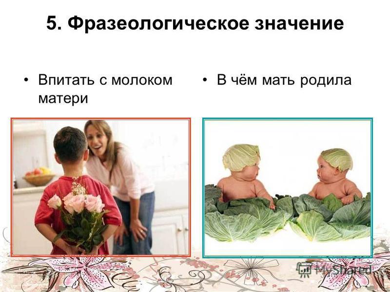 5. Фразеологическое значение Впитать с молоком матери В чём мать родила