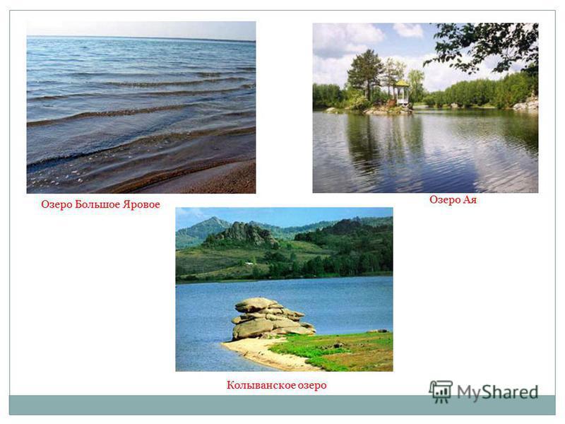 Озеро Большое Яровое Озеро Ая Колыванское озеро