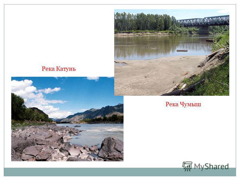 Река Катунь Река Чумыш