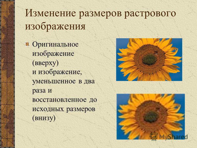 Изменение размеров растрового изображения Оригинальное изображение (вверху) и изображение, уменьшенное в два раза и восстановленное до исходных размеров (внизу)