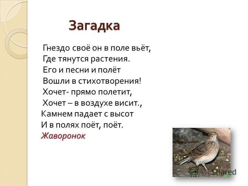 Загадка Гнездо своё он в поле вьёт, Где тянутся растения. Его и песни и полёт Вошли в стихотворения ! Хочет - прямо полетит, Хочет – в воздухе висит., Камнем падает с высот И в полях поёт, поёт. Ж Жаворонок