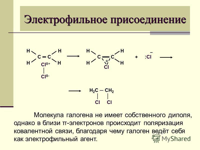 Электрофильное присоединение Н С С Н Cl δ+ Cl δ- Н С С Н + Cl + :Cl H 2 C CH 2 Cl Cl Молекула галогена не имеет собственного диполя, однако в близи π-электронов происходит поляризация ковалентной связи, благодаря чему галоген ведёт себя как электрофи