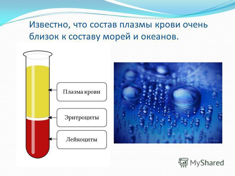 Известно, что состав плазмы крови очень близок к составу морей и океанов. Плазма крови Эритроциты Лейкоциты