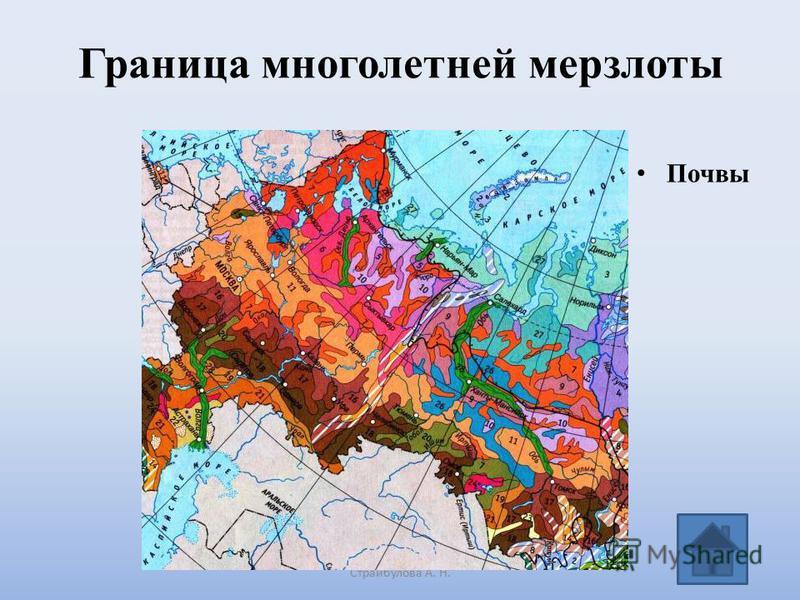 Граница многолетней мерзлоты Страйбулова А. Н. Почвы