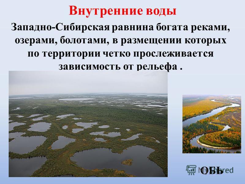 Внутренние воды Западно-Сибирская равнина богата реками, озерами, полотами, в размещении которых по территории четко прослеживается зависимость от рельефа. ОБЬ