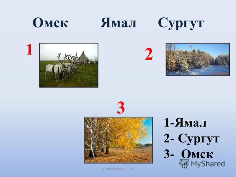 Омск Ямал Сургут Страйбулова А. Н. 1 2 1-Ямал 2- Сургут 3- Омск 3