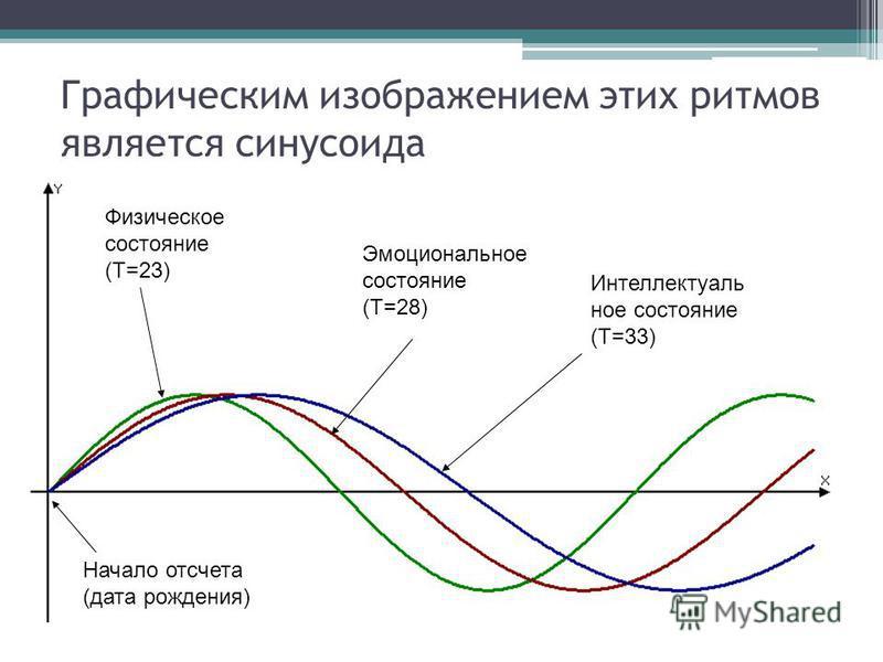 Графическим изображением этих ритмов является синусоида Начало отсчета (дата рождения) Физическое состояние (Т=23) Эмоциональное состояние (Т=28) Интеллектуаль ное состояние (Т=33)