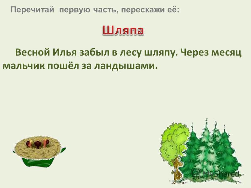 Весной Илья забыл в лесу шляпу. Через месяц мальчик пошёл за ландышами. Перечитай первую часть, перескажи её: