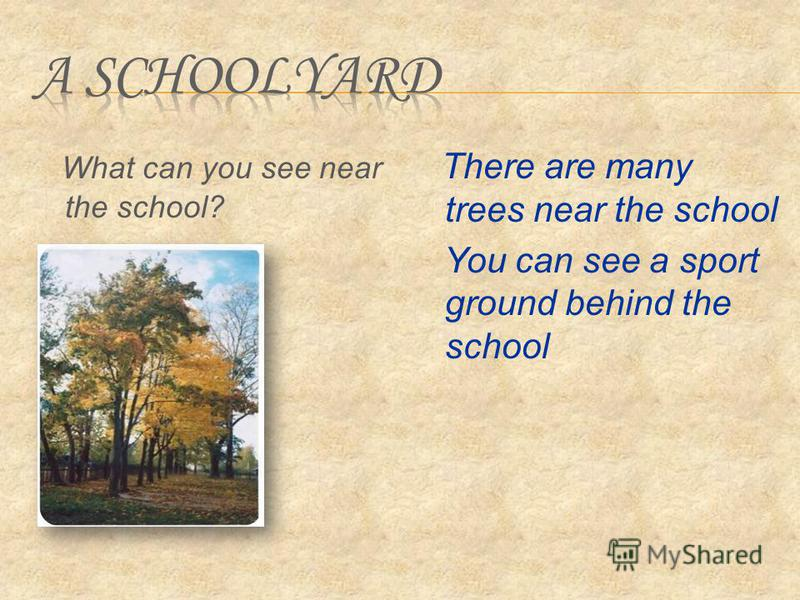 What can you see near the school? There are many trees near the school You can see a sport ground behind the school
