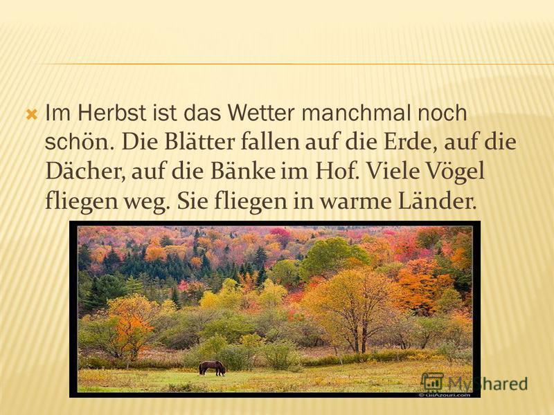 Im Herbst ist das Wetter manchmal noch sch ön. Die Blätter fallen auf die Erde, auf die Dächer, auf die Bänke im Hof. Viele Vögel fliegen weg. Sie fliegen in warme Länder.