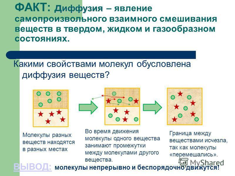 диффузия ФАКТ: диффузия – явление самопроизвольного взаимного смешивания веществ в твердом, жидком и газообразном состояниях. Какими свойствами молекул обусловлена диффузия веществ? ВЫВОД:ВЫВОД: молекулы непрерывно и беспорядочно движутся! Молекулы р