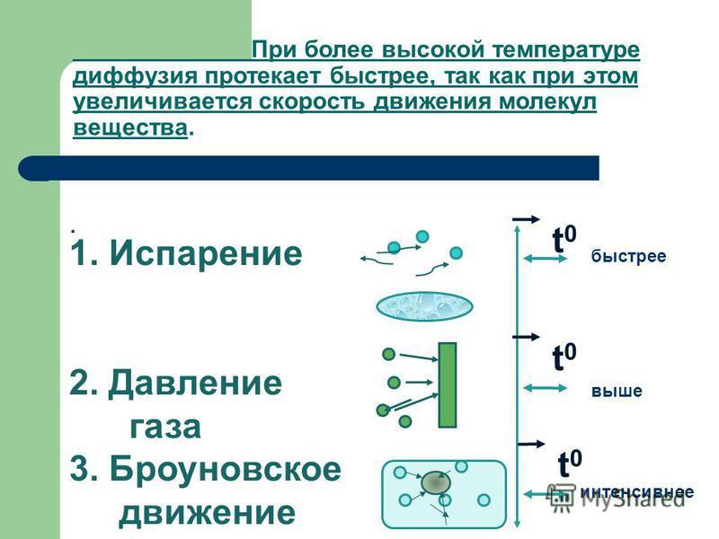 . 1. Испарение 2. Давление газа 3. Броуновское движение t0t0 t0t0 t0t0 интенсивнее выше быстрее