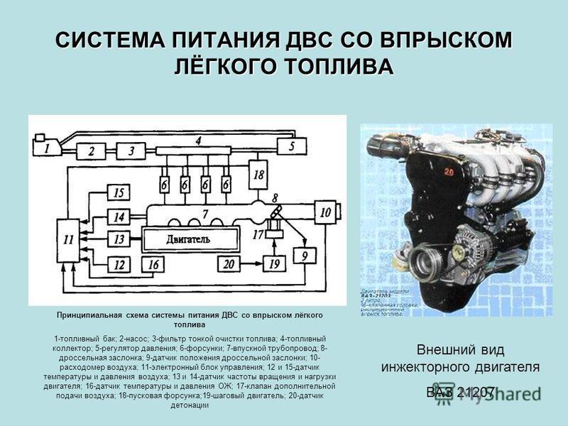 СИСТЕМА ПИТАНИЯ ДВС СО ВПРЫСКОМ ЛЁГКОГО ТОПЛИВА Принципиальная схема системы питания ДВС со впрыском лёгкого топлива 1-топливный бак; 2-насос; 3-фильтр тонкой очистки топлива; 4-топливный коллектор; 5-регулятор давления; 6-форсунки; 7-впускной трубоп