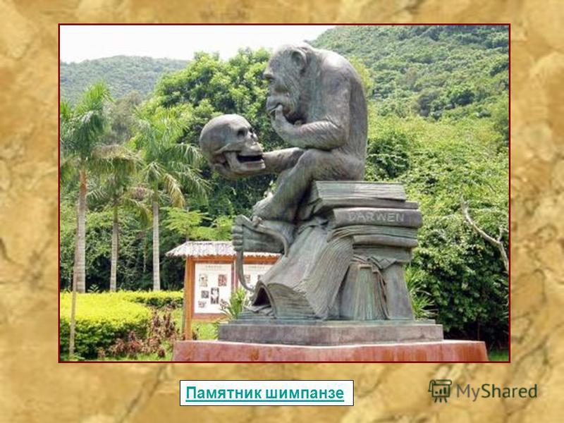 Памятник шимпанзе