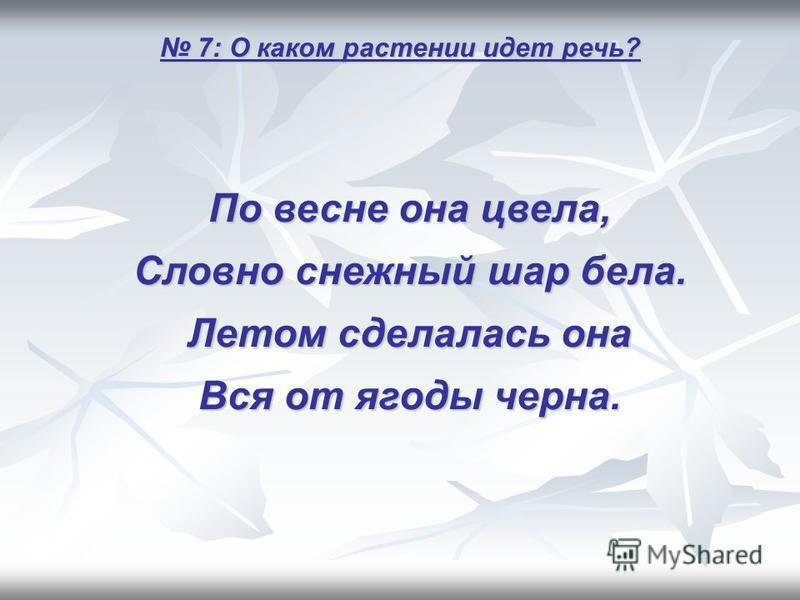 7: О каком растении идет речь? 7: О каком растении идет речь? По весне она цвела, Словно снежный шар бела. Летом сделалась она Вся от ягоды черна.