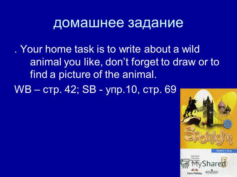 домашнее задание. Your home task is to write about a wild animal you like, dont forget to draw or to find a picture of the animal. WB – стр. 42; SB - упр.10, стр. 69