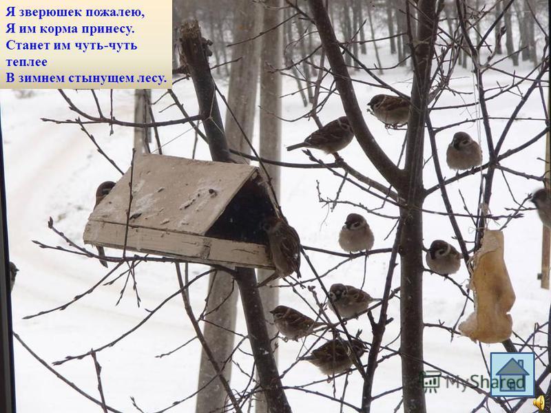 Воют вьюги да метели В грозном лютом феврале. Все зверюшки похудели, Те, что спрятались в норе. На исходе вся их пища, Заготовленная впрок. Завалил у них жилища С неба сыплющий снежок.
