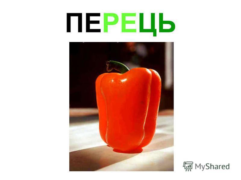 ПЕРЕЦЬ