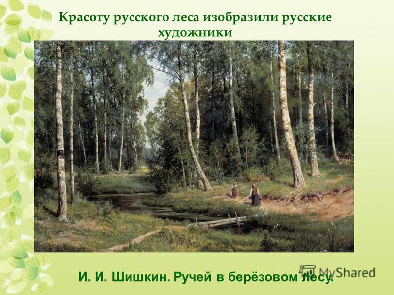 Красоту русского леса изобразили русские художники И. И. Шишкин. Ручей в берёзовом лесу.